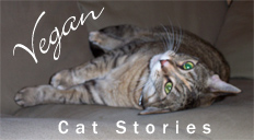 Vegan Cat Stories